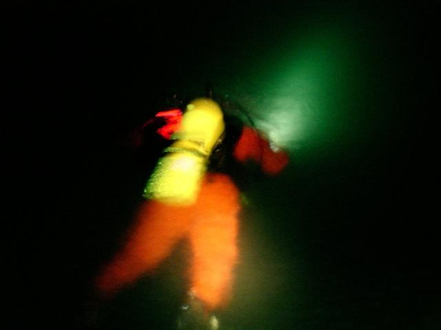 Night Dive 3